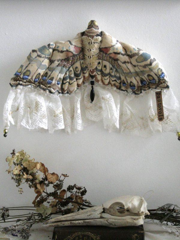 textile moth