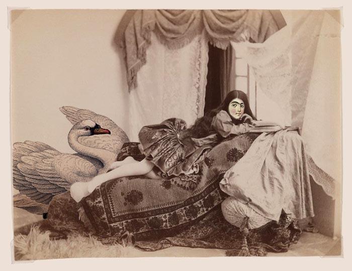 Persian Princess – Photograph