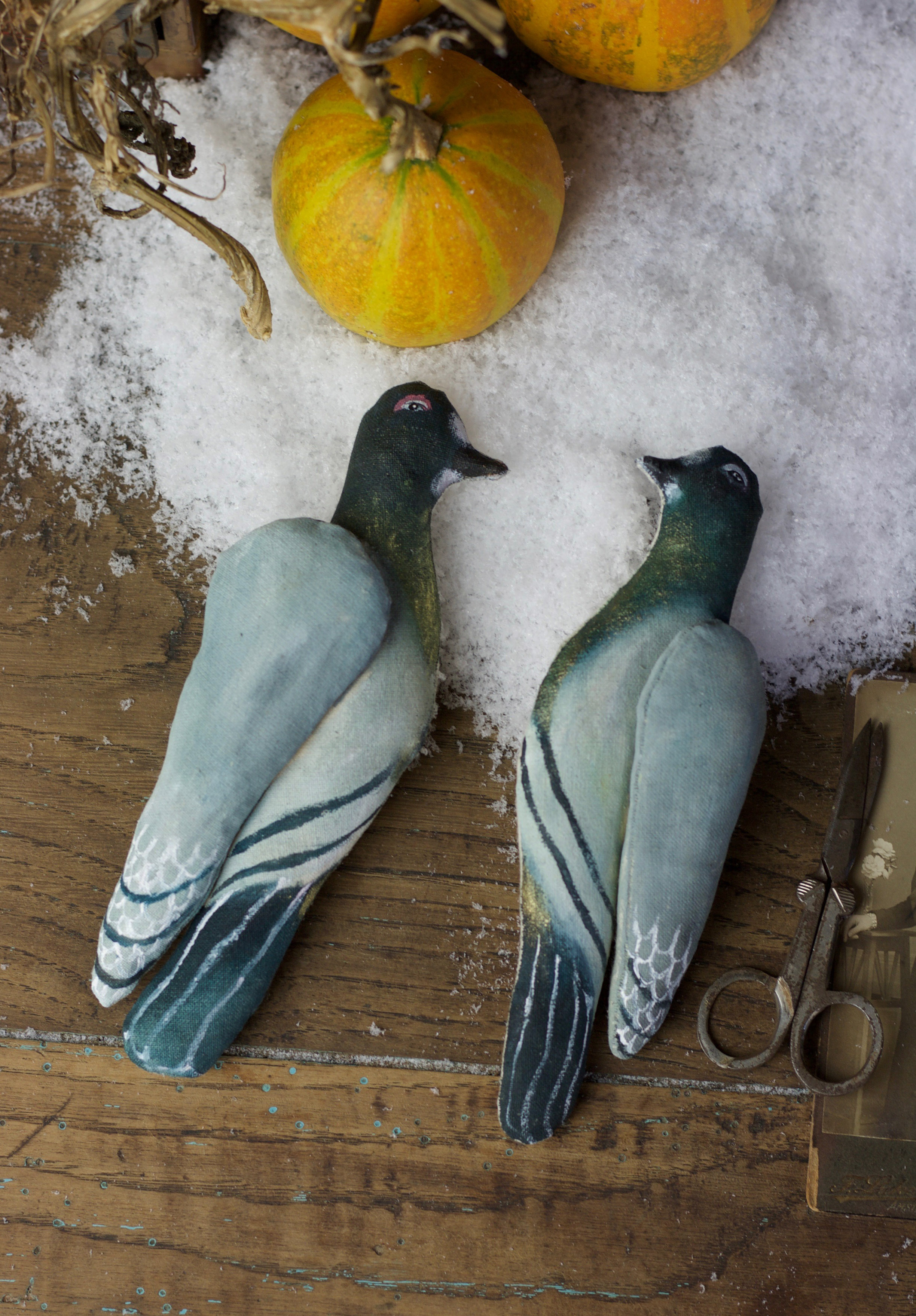 Pigeons of Annabel Snow